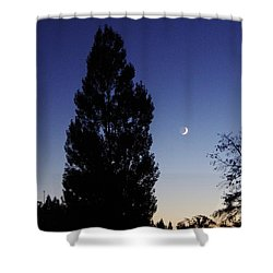 Julian Night Sky 2013 A Shower Curtain