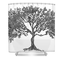 July '12 Shower Curtain