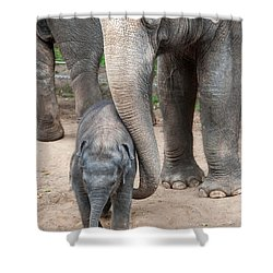 Jumbo Love Shower Curtain