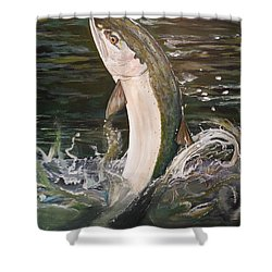 Jumping Steelhead Shower Curtain