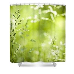 June Grass Flowering Shower Curtain by Elena Elisseeva