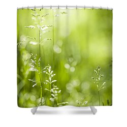 June Green Grass  Shower Curtain by Elena Elisseeva