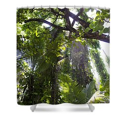 Jungle Canopy Shower Curtain