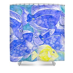 Junior Goes To School Shower Curtain
