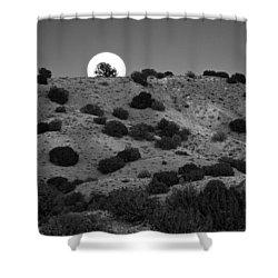Juniper At Moonrise Shower Curtain