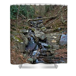 Just A Creek Shower Curtain by Skip Willits