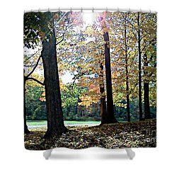 Just A Glimpse Of Sunlight Shower Curtain