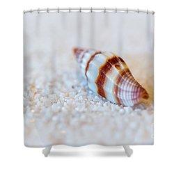 Just A Little Shell Shower Curtain