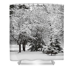 Just After A Snowfall Shower Curtain by Mary Machare