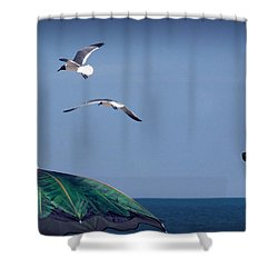 Shower Curtain featuring the photograph Just Another Day At The Beach by Phil Mancuso