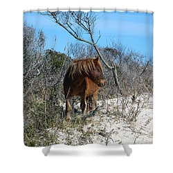 Just Another Day At The Beach Shower Curtain