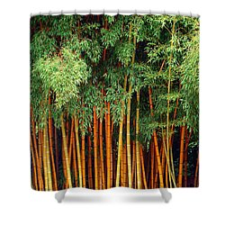 Just Bamboo Shower Curtain