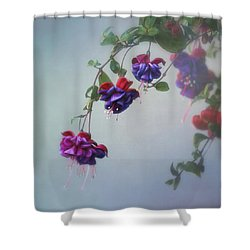 Just Because Shower Curtain by Kim Hojnacki