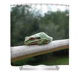 Shower Curtain featuring the photograph Just Chillin' by Cheryl Hoyle