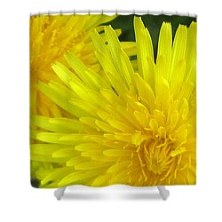 Just Dandy Shower Curtain by Janice Westerberg