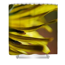 Shower Curtain featuring the photograph Just Dandy by Wendy Wilton