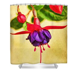 Just Hanging Around Shower Curtain by Peggy Hughes