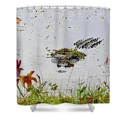 Shower Curtain featuring the photograph Just Hanging Out by Cynthia Guinn