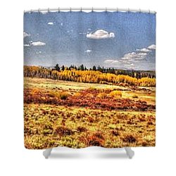 Just North Of Fairplay Colorado Shower Curtain by Lanita Williams