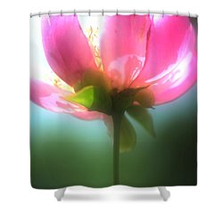 Just One Shower Curtain by Kathleen Struckle