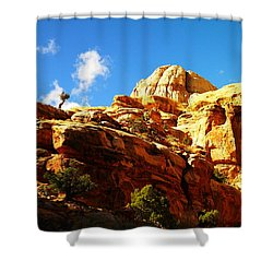 Just One Tree Shower Curtain by Jeff Swan