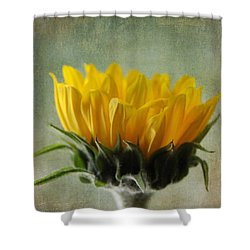Just Opening Sunflower Shower Curtain
