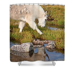 Just Passing By Shower Curtain by Jim Garrison
