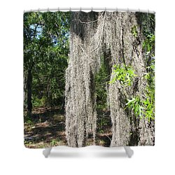 Shower Curtain featuring the photograph Just The Backyard by Greg Patzer
