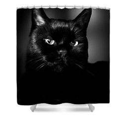 Just Thinking Shower Curtain by Bob Orsillo