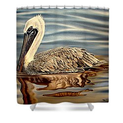 Shower Curtain featuring the painting Juvenile Pelican by Phyllis Beiser
