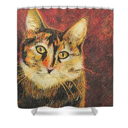 Kaco Shower Curtain