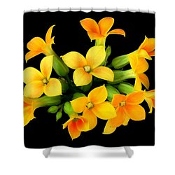 Kalanchoe Shower Curtain