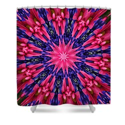 Kaleidoscope 10 Shower Curtain