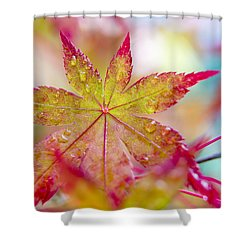 Kaleidoscope Shower Curtain by Caitlyn  Grasso