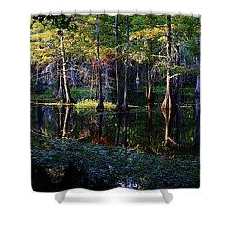 Kaleidoscope Light Shower Curtain