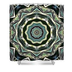Kaleidoscope Shower Curtain by Oksana Semenchenko