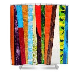 Kaleidoscopic Shower Curtain