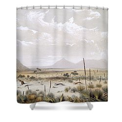 Kangaroo Hunting Near Port Lincoln Shower Curtain by George French Angas