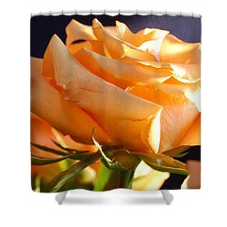 Kathy's Rose Shower Curtain