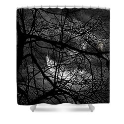Keeper Of Spirits Shower Curtain by Lourry Legarde