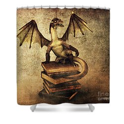 Keeper Of Wisdom Shower Curtain by Jutta Maria Pusl