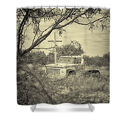 Shower Curtain featuring the digital art Keeping Watch by Erika Weber