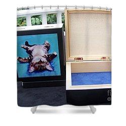 Keepsake Box Shower Curtain by Pat Saunders-White