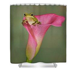Kermit Peeking Out Shower Curtain by Susan Candelario