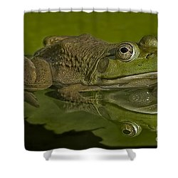 Kermit Shower Curtain by Susan Candelario