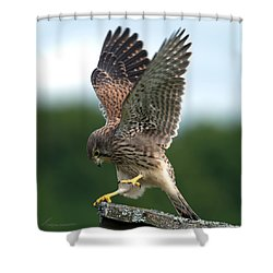 Kestrel's Performance Shower Curtain