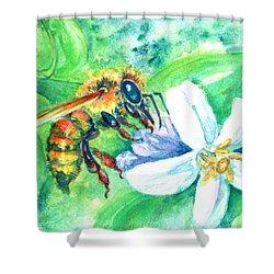 Key Lime Honeybee Shower Curtain