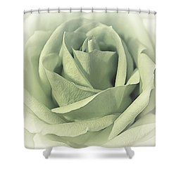 Key Lime Souffle Shower Curtain