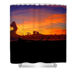 Key West Sun Set Shower Curtain by Iconic Images Art Gallery David Pucciarelli