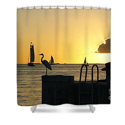 Shower Curtain featuring the photograph Key West Sunset by Olga Hamilton